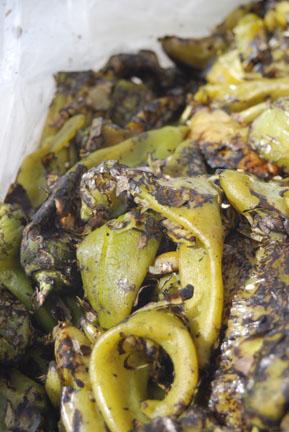 Roasted Hatch Chili