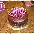 Porcupine Cake